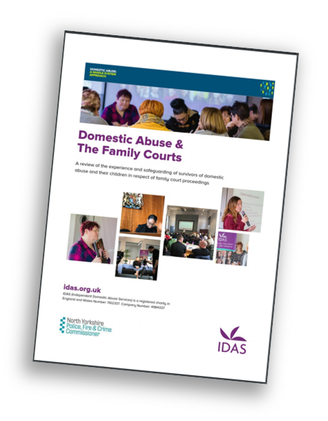 Download the Domestic Abuse and Family Courts report